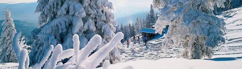 Winter Urlaub Im Feriengebiet Bayerischer Wald Aktivitaten Orte